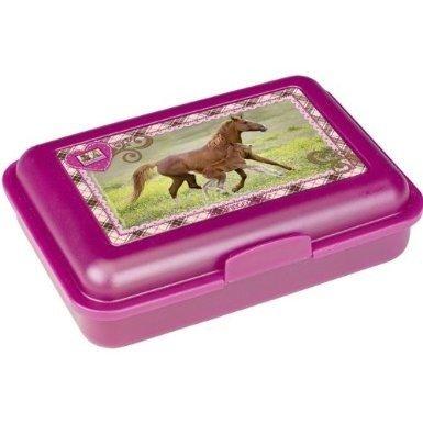 Lunch box Koń mój przyjaciel