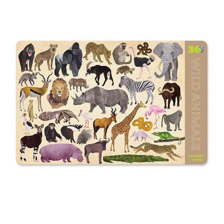 Podkładka, motyw dzikie zwierzęta, CC-2843-4